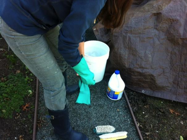 How to Clean Outdoor Mold & Mildew | Clorox®