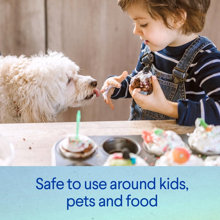 safe to use around kids, pets and food